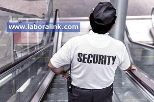 pruebas para vigilante de seguridad